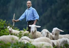 Srebrni Pastirci